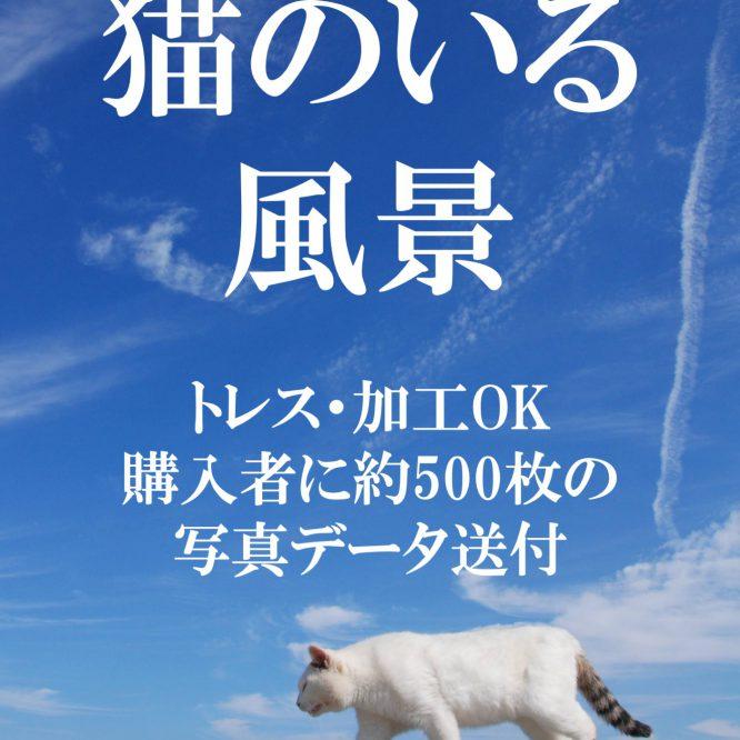 背景資料集「猫のいる風景」