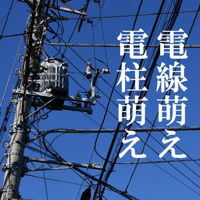 背景資料集「電線・電柱」